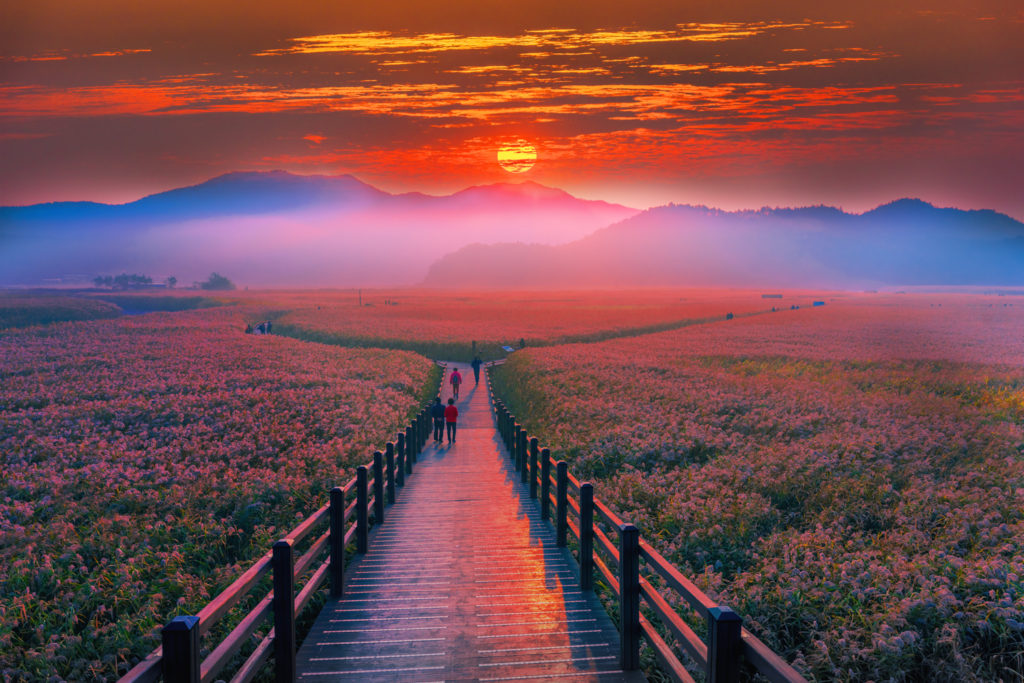 Beautiful Sunrise at Suncheon, Baysouth, South Korea